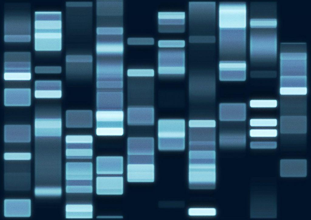 Przełomowe odkrycie kodu DNA